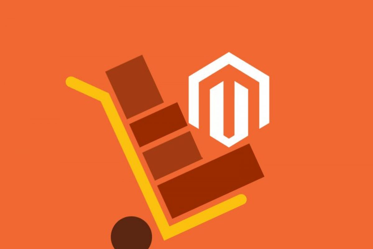 The importance of professional UK Magento Hosting